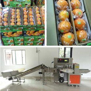 全自动脐橙包装机 脐橙包装机使用什么电机