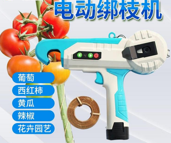 电动绑枝机生产厂家 进口电动绑枝机价格