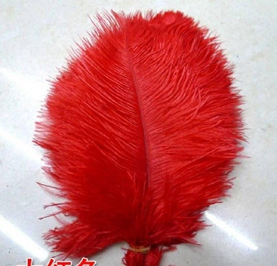 彩色鸵鸟毛厂家价格 彩色鸵鸟毛批发
