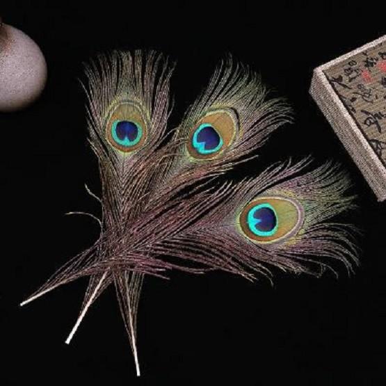 天然孔雀羽毛 现货直供天然孔雀毛