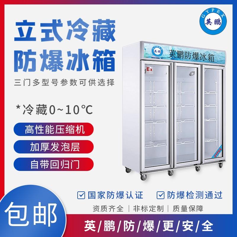 卧式防爆冰柜生产厂家 卧式防爆冰柜批发价格