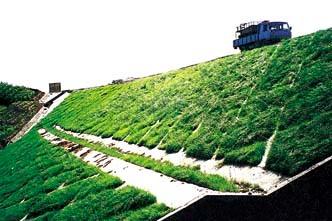 草皮护坡多少钱一平方 草皮护坡价钱