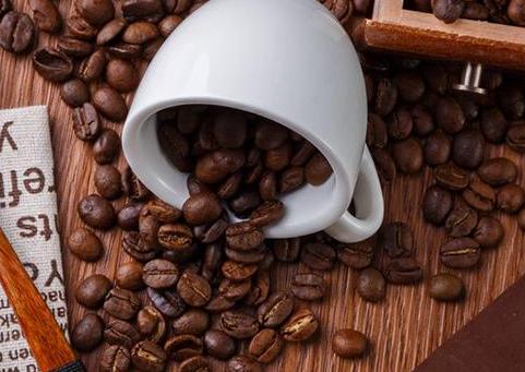 咖啡豆批发价格表 咖啡豆批发市场在哪里
