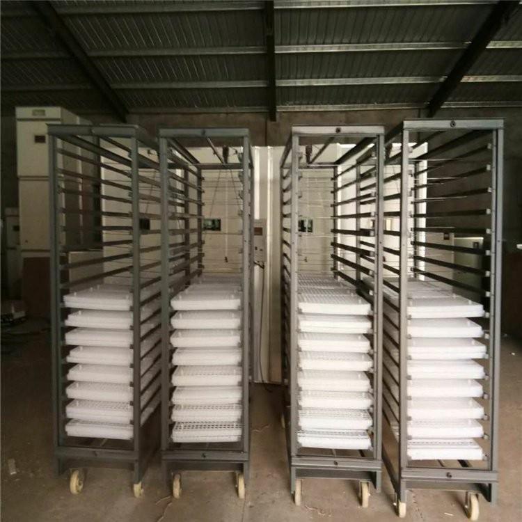 大型全自动孵化机价格是多少 大型全自动孵化机厂商