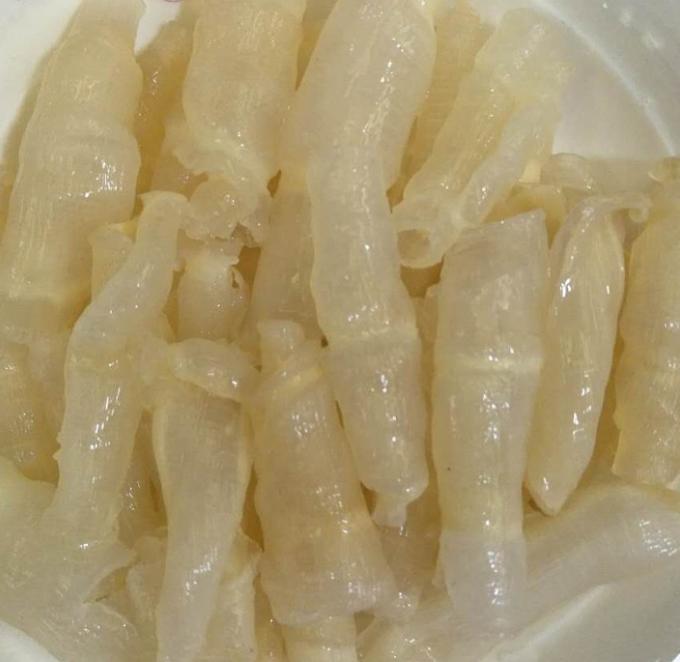 红鱼肚多少钱一斤 红鱼肚批发价格