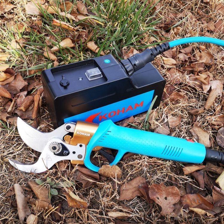 电剪刀多少钱一把 电剪刀图片大全