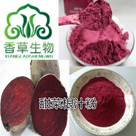 红甜菜根提取物生产厂家 红甜菜根提取物批发价格