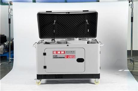 欧洲狮10千瓦柴油发电机 10千瓦柴油发电机多少钱一台