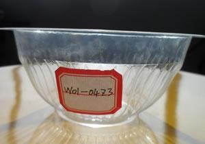 一次性塑料碗批发 一次性塑料碗厂家直销